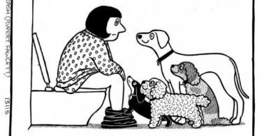 humour canin