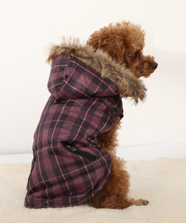 comment choisir un manteau pour son chien blog canin. Black Bedroom Furniture Sets. Home Design Ideas