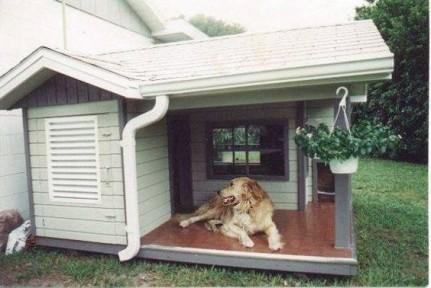 Comment construire une niche pour chien conseils avis s for Niche exterieur pour chien