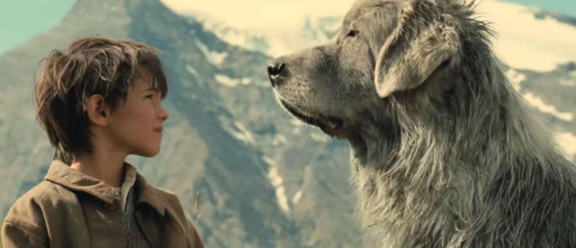 chiens célèbres du cinéma