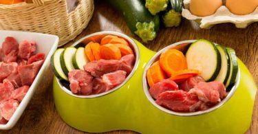 nourriture bio pour chiens