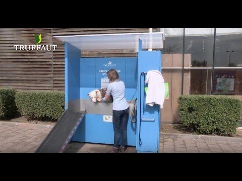 station de lavage pour chien
