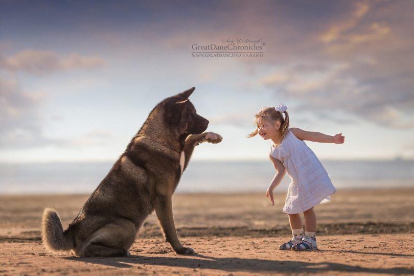 Les petits enfants et leurs grands chiens, par Andy Seliverstoff