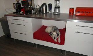 chien dans un meuble de cuisine ikea