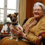 chien d'assistance pour personnes âgées