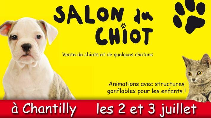 Le salon du chiot chantilly blog canin for Salon du chiot reze 2017