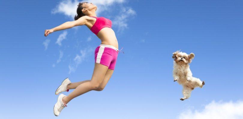 bien-être et santé de votre chien