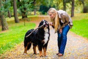 passer du temps avec son chien
