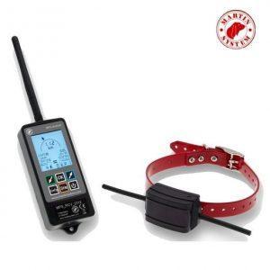 collier chien radio
