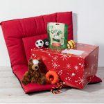 Box de Noël pour chien