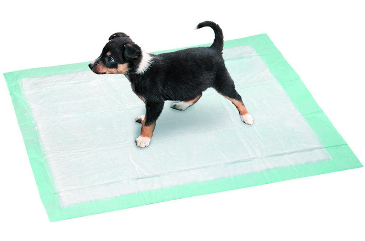 tapis de propreté pour chien