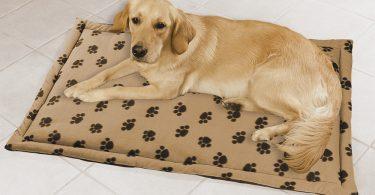 Tapis pour chien diff rents types d 39 accessoires d couvrir - Tapis de course pour chien ...