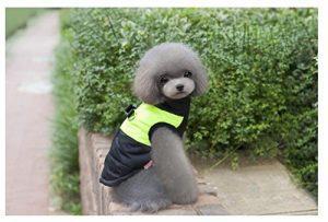manteau pour petit chien bande fluorescente