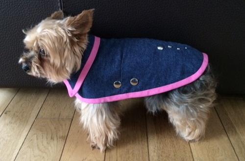 manteau pour yorkshire