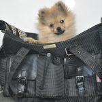sac à main de transport pour chien