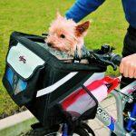 sac de transport pour chien avant en vélo