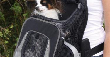 sac à dos ventral pour transport de chien