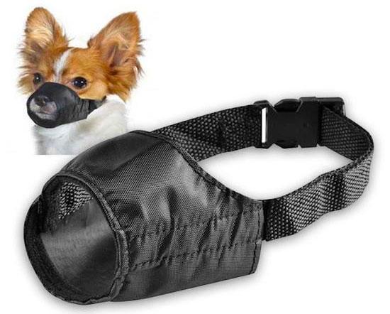 muselière nylon pour petits chien